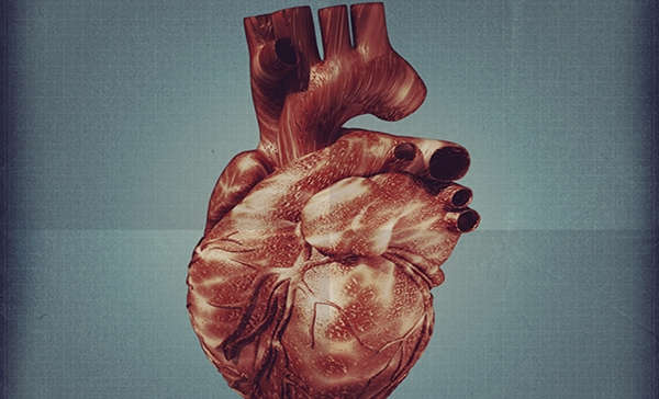 Cardiovascular effects can be among the most serious adverse events resulting from chemotherapy, and can occur early or late during the treatment. Cardiotoxicity can be mild, consisting of blood pressure changes, to more severe, such as myocardial infarction and heart failure.13