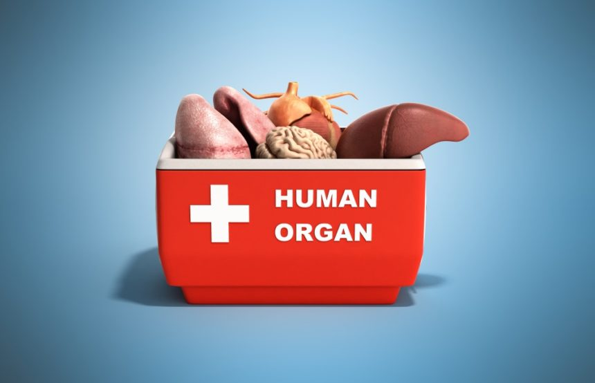 organs for donation