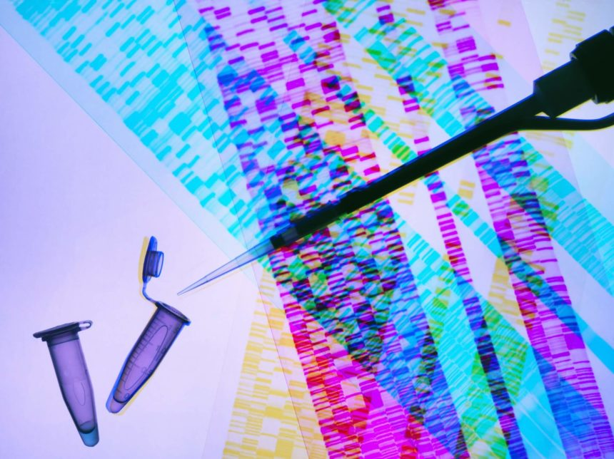 Pipette, DNA sample, DNA autoradiogram